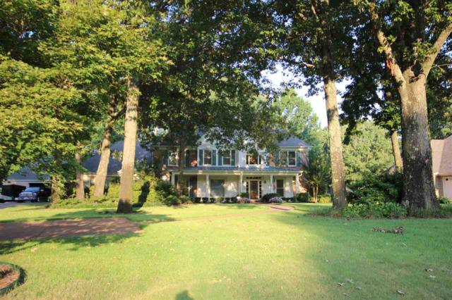 9095 Joy Lynn Cv, Olive Branch, MS 38654 (#10009847) :: The Wallace Team - RE/MAX On Point