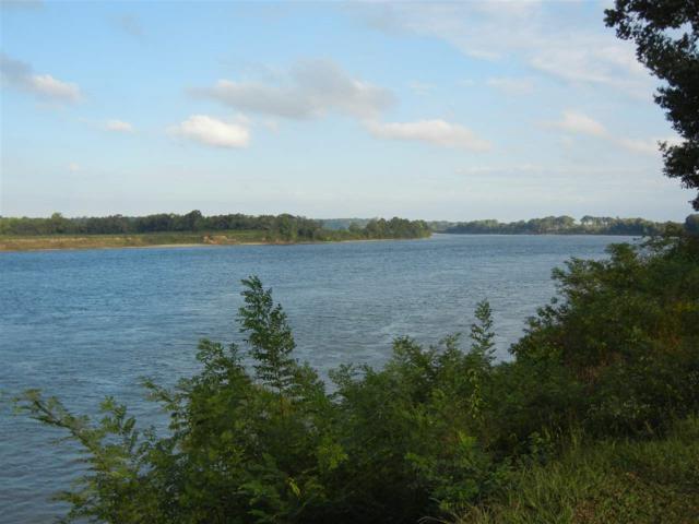 0 Waterview Loop, Savannah, TN 38372 (#10011544) :: RE/MAX Real Estate Experts