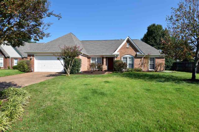 373 Cherry Hollow Cv, Cordova, TN 38018 (#10011604) :: ReMax On Point