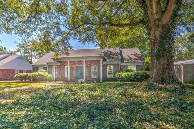 6461 Messick Rd, Memphis, TN 38119 (#10011851) :: RE/MAX Real Estate Experts