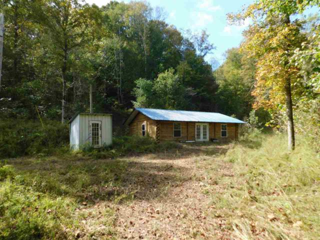 13490 Mt Carmel Rd, Decaturville, TN 38329 (#10013726) :: RE/MAX Real Estate Experts