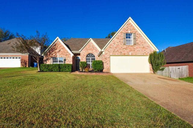6073 S Shadow Oaks Cv, Olive Branch, MS 38654 (#10013947) :: Berkshire Hathaway HomeServices Taliesyn Realty