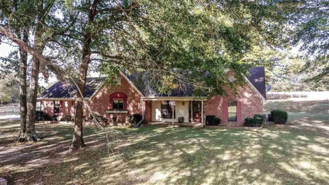 7266 Old Brownsville Rd, Bartlett, TN 38002 (#10014359) :: The Wallace Team - RE/MAX On Point