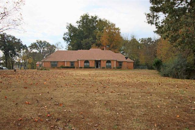 831 Long St, Southaven, MS 38672 (#10015669) :: JASCO Realtors®