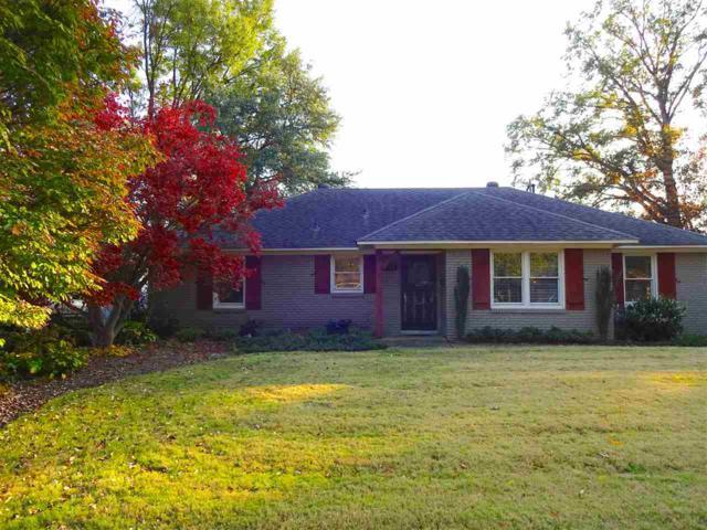 5117 Woodlark Ave, Memphis, TN 38117 (#10015819) :: RE/MAX Real Estate Experts