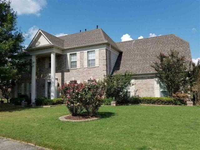 300 River Branch Dr, Collierville, TN 38017 (#10015825) :: Eagle Lane Realty