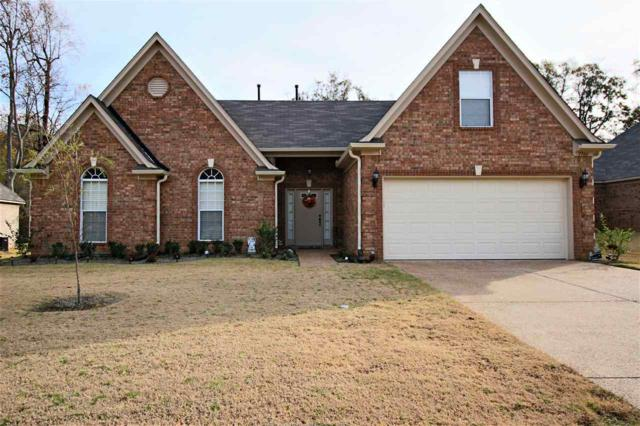 7766 Morningside Cv, Walls, MS 38680 (#10015992) :: JASCO Realtors®