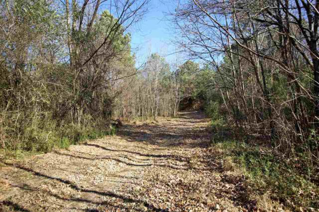 0 Hwy 193 Hwy, Unincorporated, TN 38048 (#10017116) :: ReMax On Point