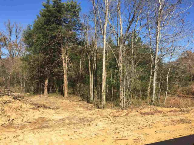 LOT 13 Harvest Rd, Coldwater, MS 38618 (#10017229) :: The Melissa Thompson Team