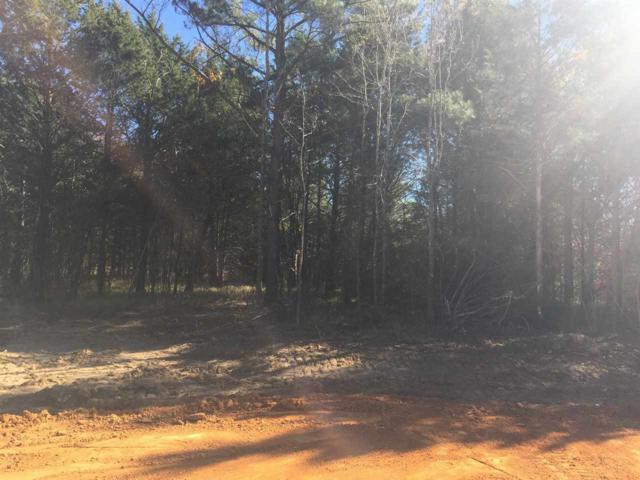 LOT 7 Acorn Rd S, Coldwater, MS 38618 (#10017375) :: The Wallace Team - RE/MAX On Point