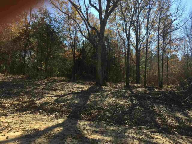 LOT 3 Harvest Rd, Coldwater, MS 38618 (#10017380) :: The Wallace Team - RE/MAX On Point