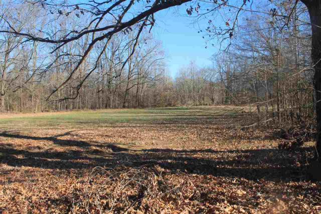 336 Jamerson Farm Cv Cv, Collierville, TN 38017 (#10017660) :: The Wallace Team - RE/MAX On Point