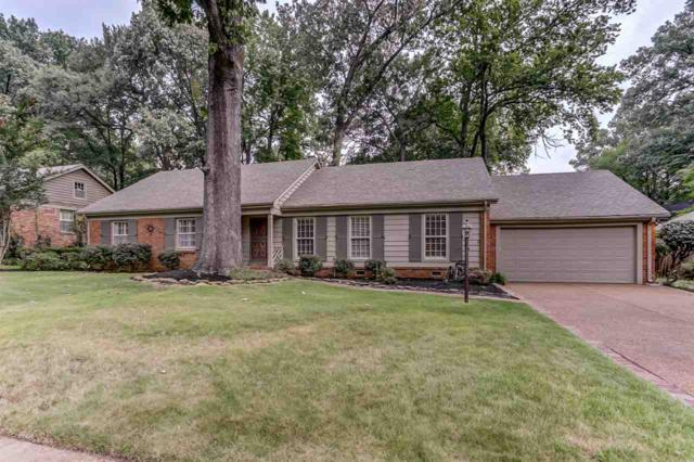 5204 Mary Starnes Dr, Memphis, TN 38117 (#10018039) :: The Wallace Team - RE/MAX On Point