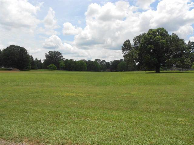 16 Carl Ln, Savannah, TN 38372 (#10018056) :: The Wallace Team - RE/MAX On Point