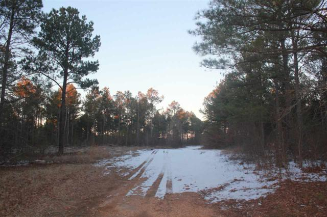 580 Homer Crawford Rd, Coldwater, MS 38611 (#10018757) :: The Melissa Thompson Team