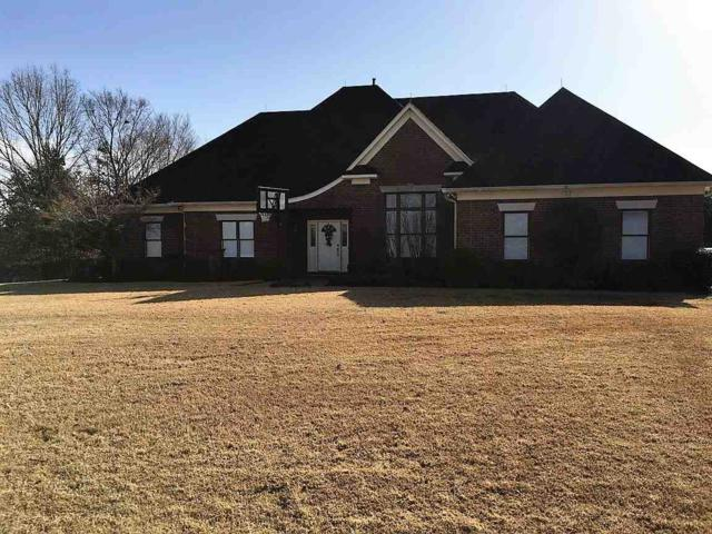 570 Hwy 195 Hwy, Unincorporated, TN 38068 (#10018909) :: The Melissa Thompson Team
