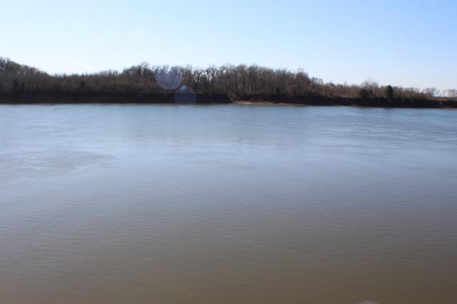 80 River Breeze Rd, Savannah, TN 38372 (#10019313) :: The Wallace Team - RE/MAX On Point
