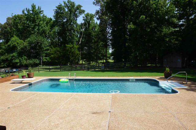 8270 Pleasant Ridge Rd, Unincorporated, TN 38002 (#10019438) :: The Wallace Team - RE/MAX On Point