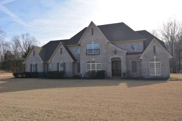 3725 Jenkins Ave, Unincorporated, TN 38066 (#10019790) :: The Wallace Team - RE/MAX On Point