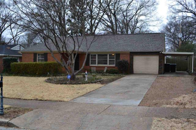 5362 Chickasaw Ave, Memphis, TN 38120 (#10019879) :: The Wallace Team - RE/MAX On Point