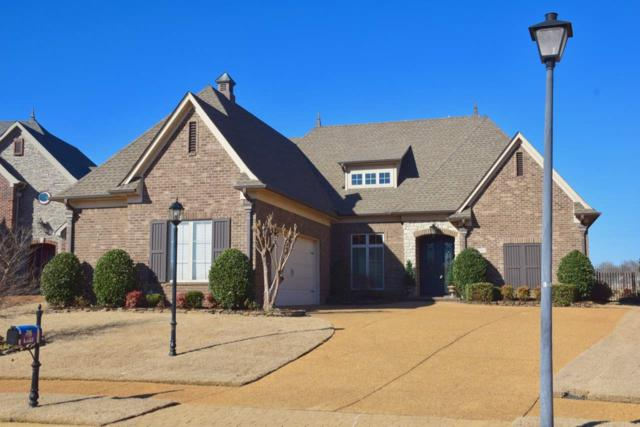 6856 N Dakota Cir N, Olive Branch, MS 38654 (#10020074) :: The Wallace Team - RE/MAX On Point
