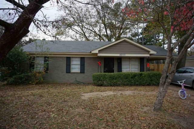 4203 Kerwin Dr, Memphis, TN 38128 (#10020125) :: The Wallace Team - RE/MAX On Point