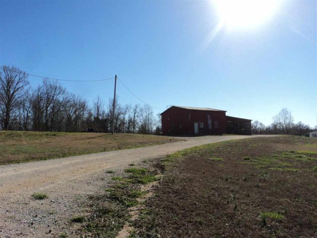 730 Morris Dr, Unincorporated, TN 38068 (#10020808) :: The Wallace Team - RE/MAX On Point