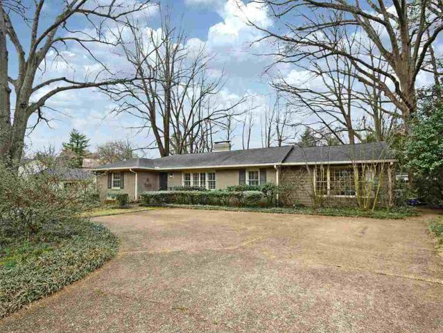 53 W Walnut Grove Cir, Memphis, TN 38117 (#10020840) :: The Wallace Team - RE/MAX On Point