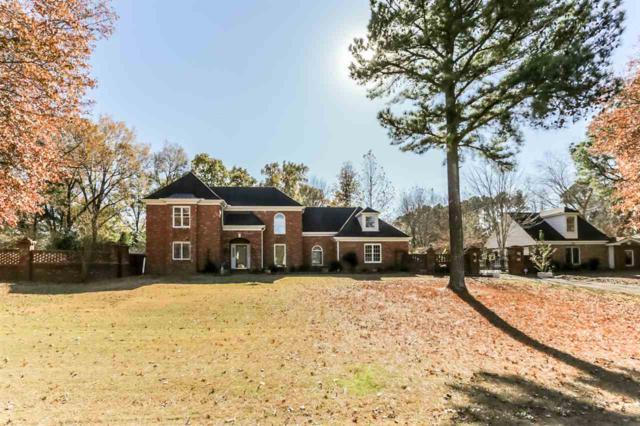 10125 Misty Hill Dr, Collierville, TN 38017 (#10020927) :: The Wallace Team - RE/MAX On Point