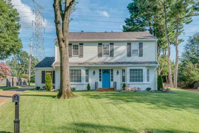 6411 Davidson Cv, Memphis, TN 38119 (#10021459) :: The Wallace Team - RE/MAX On Point