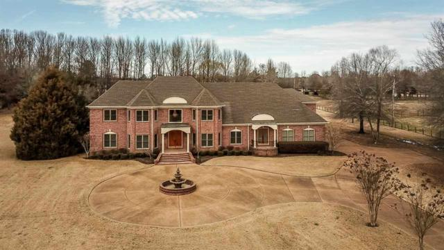 9376 Forest Wind Cv, Collierville, TN 38017 (#10021558) :: The Melissa Thompson Team