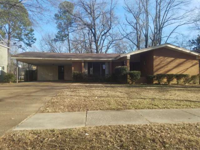 3064 Domar St, Memphis, TN 38118 (#10021563) :: The Wallace Team - RE/MAX On Point