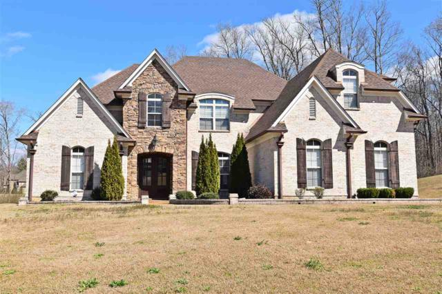11444 Andrews Park Cv, Olive Branch, MS 38654 (#10021898) :: The Wallace Team - RE/MAX On Point