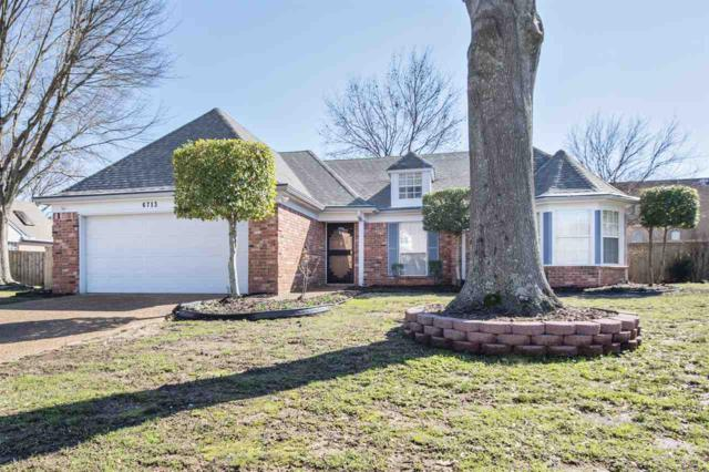6713 Laurel Valley Dr, Bartlett, TN 38135 (#10021973) :: The Wallace Team - RE/MAX On Point