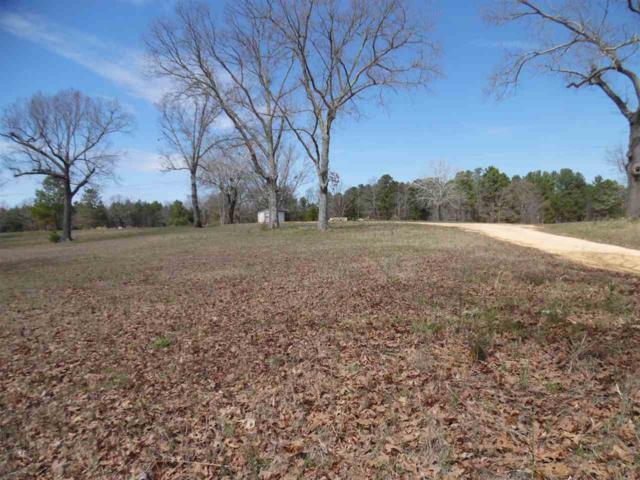 220 Bill Welch Dr, Savannah, TN 38372 (#10022774) :: RE/MAX Real Estate Experts