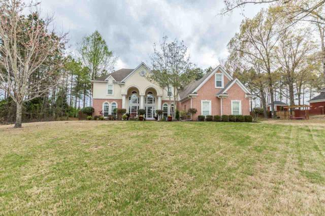 5039 Meadow Pointe Dr, Southaven, MS 38672 (#10023988) :: The Wallace Team - RE/MAX On Point