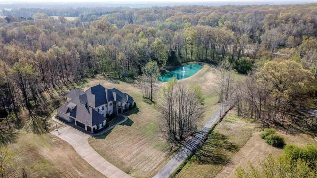 11710 Macedonia Rd, Arlington, TN 38002 (#10024605) :: The Melissa Thompson Team