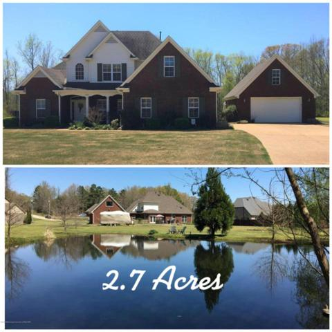 153 Polo Run Cv, Byhalia, MS 38611 (#10024711) :: JASCO Realtors®