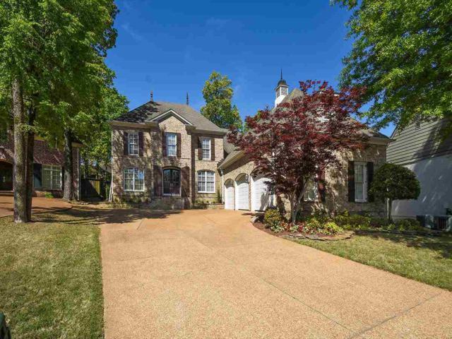 6635 Heronswood Cv, Memphis, TN 38119 (#10026099) :: RE/MAX Real Estate Experts