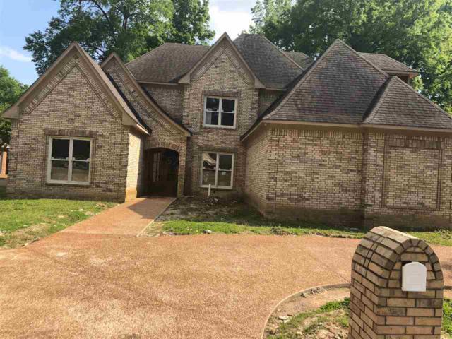 6657 S Kirby Oaks Cv, Memphis, TN 38119 (#10026239) :: The Melissa Thompson Team