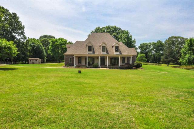 190 Evening Shade Cv, Unincorporated, TN 38028 (#10027098) :: The Wallace Group - RE/MAX On Point