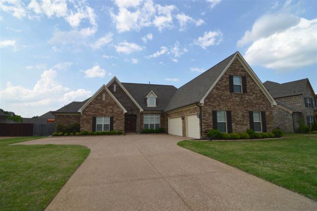 5875 Windsor Falls Loop, Arlington, TN 38002 (#10027173) :: The Wallace Group - RE/MAX On Point