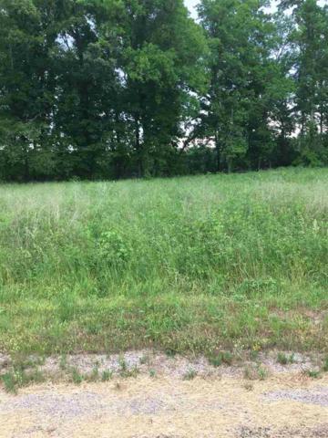 00 Tennessee River Ln, Waynesboro, TN 38370 (#10027254) :: RE/MAX Real Estate Experts