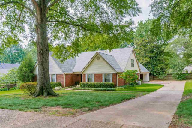 6829 Garden Oaks Dr, Memphis, TN 38120 (#10027766) :: JASCO Realtors®