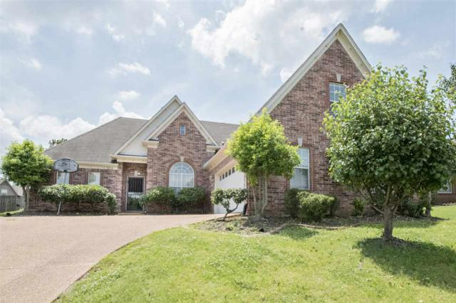 8234 Floral Springs Dr, Memphis, TN 38016 (#10027798) :: ReMax Experts