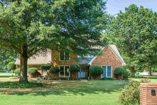 8974 Gandy Cv, Bartlett, TN 38133 (#10029751) :: Berkshire Hathaway HomeServices Taliesyn Realty