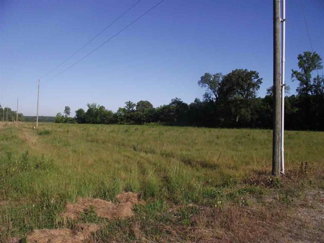 39 Charles Ward Way, Selmer, TN 38375 (#10030032) :: RE/MAX Real Estate Experts