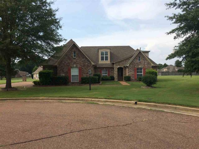 9414 Barkley Dale Cv, Collierville, TN 38017 (#10032046) :: Berkshire Hathaway HomeServices Taliesyn Realty