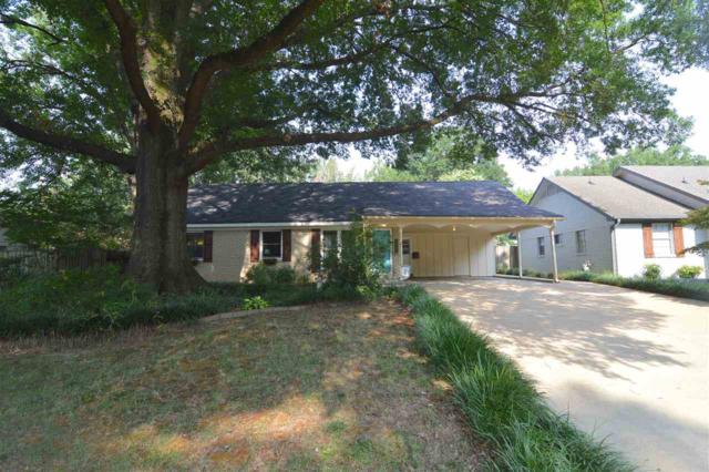 1679 Sterling Dr, Memphis, TN 38119 (#10032169) :: The Wallace Group - RE/MAX On Point