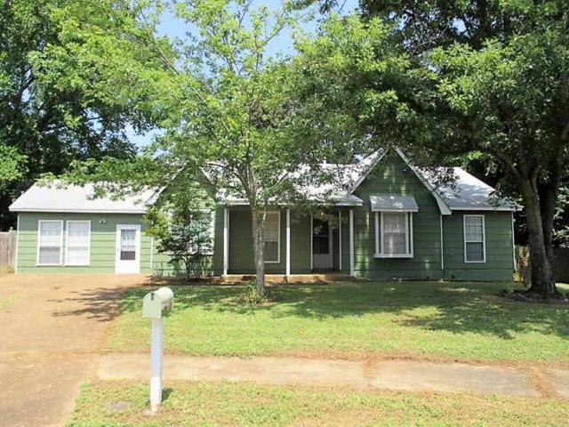 3735 Rippling Creek Cv, Unincorporated, TN 38135 (#10032284) :: The Wallace Group - RE/MAX On Point
